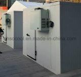 Sistema de Refrigeração monobloco Modular de pé na sala de congelador Modular do chiller