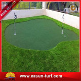 Putting Green Mini golf indoor