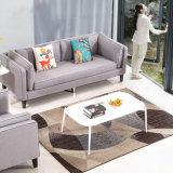 Gewebe-Couch mit Kaffeetische für Wohnzimmer-Lagerung