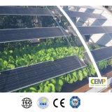 Il comitato solare alta tecnologia 290W di Monocrystyalline permette al futuro di potere verde