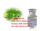 De organische Olie van de Pepermunt van het Ingrediënt van de Pepermunt Essentiële