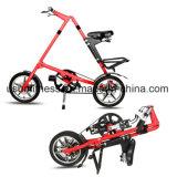Профессиональное изготовление взрослый Bike и Bike малышей