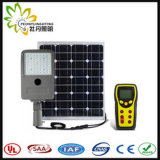 IP65 50W Ajustable, prezzo di fabbrica! ! Ha integrato tutti in un indicatore luminoso di via solare del LED! ! Induzione di Infrared del corpo umano! ! Giardino/parete/lampada esterni del cortile