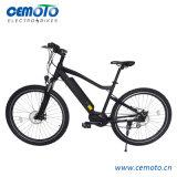 2018 Novo Design de Moda de bicicletas eléctricas do motor