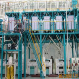 الصين صاحب مصنع [100ت] حبّ ذرة مطحنة معمل [هيغقوليتي]