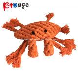 Hund spielt die Starfish, die Spielzeug-Baumwolseil-Haustier-Produkt kauen