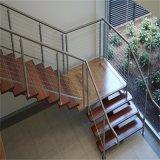 Balcony S.S304/316 Cable het Traliewerk van de Kabel van de Trede van het Staal van /Stainless van de Leuning van de Balustrade van de Draad