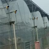 Tomotoesのための低価格の経済的な紫外線抵抗力があるプラスチック温室
