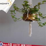Gancio di ceramica della pianta del Macrame del POT del regalo del giardino di Deco del cotone