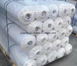 Membrane imperméable à l'eau de PVC de tunnel/souterrain