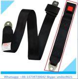 Caliente-Venta del fabricante del cinturón de seguridad 2-Point