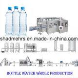 Imbottigliatrice automatica dell'acqua per la linea di produzione completa