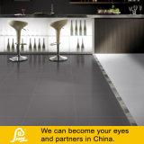 Reine graue Farben-rustikale Porzellan-Fliese für Fußboden und Wand