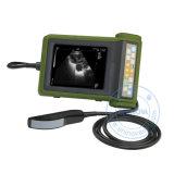 Ultrasuono veterinario tenuto in mano (SonoScan A10V)