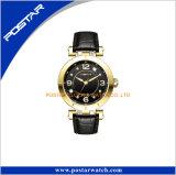 Montre de luxe de diamant d'acier inoxydable de montres de dames