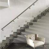 Pasamano de cristal de la escalera de la instalación fácil con el sostenedor del aislamiento del acero inoxidable