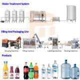 순수한 식용수를 위한 병에 넣은 물 생산 라인을 완료하십시오