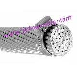 Aluminiumlegierung-blank Leiter-Haselnuss 500mm2 des Kabel-AAAC des Leiter-35mm