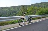 1: 1 Pedal-behilfliches Systems-elektrisches Fahrrad 8000W von China