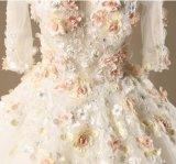 Abiti nuziali del merletto 3/4 di vestito da cerimonia nuziale di corallo di Foral dei manicotti Y1003