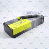 Injecteur d'essence courant de Delphes Ejb R05101d (82 00 676 774) de longeron d'Ejbr05101d (8200676774) Inyectores pour Renault