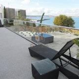 Freie Acrylbalustrade-Aluminiumbalkon-Geländer-Edelstahl-Geländer