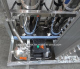 500lph 스테인리스 Electrodeionization EDI Ultrapure 급수 시스템