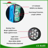 La lumière solaire projecteurs extérieur imperméable paysage décoratif LED Lampe gazon