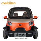 Il la cosa migliore vendendo a buon mercato 2 l'automobile elettrica astuta della rotella della persona 4