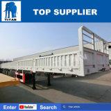 Titaan 3 de Semi Aanhangwagen van de Zijgevel van de Aanhangwagen van de Omheining van Assen