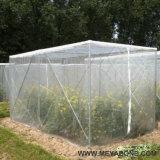 온실 채소밭을%s 반대로 곤충 그물세공 또는 농업 그물세공