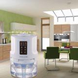 물 Voccum 공기 세탁기와 세탁기술자