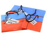 Los colores bolso de mano y el papel de la bolsa de regalo