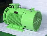 Prix usine triphasé de moteur électrique/engine de série d'IP55 Y
