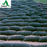 Geo-Textiles de Doek van de Zak & Geo-Textiles van de Filter voor Bescherming van Rivier