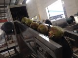 Máquina de recolección de agua de coco
