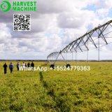 農場の庭の側面移動現代スプリンクラー潅漑機械