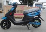 고품질 E 자전거 중국 제조 판매