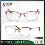 2018 neue Form-Art-Produkt-Metallgläser Eyewear Brille-optischer Rahmen