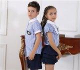 Personnalisé à la mode, à l'école primaire, garçon et fille Uniforme S53106
