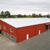 Magazzino prefabbricato di costruzione della struttura d'acciaio della costruzione di basso costo