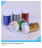 12*11g Glitter Powder voor Art en DIY