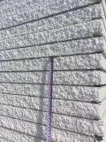 Da cor pré-fabricada da casa da alta qualidade painel de sanduíche de aço do EPS para a parede