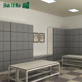 De Best-seller van de Kast van de Opslag van het Comité van Jialifu HPL in Westelijk Europa