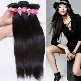 Heiße Peruaner-Menschenhaar-Extensions-seidiges Menschenhaar des Verkaufs-100%, das gerades Haar spinnt