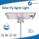 Luz de rua solar energy-saving 15-100W do diodo emissor de luz