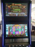 Glückliche Löwe-spielendes Kasino-videoSäulengang-Schlitz-Spiel-Maschine