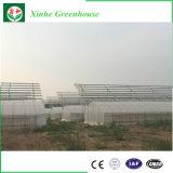 판매를 위한 다중 경간 농업 플레스틱 필름 온실