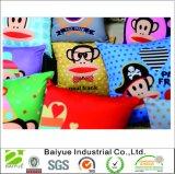 Cuscino di manovella decorativo stampato abitudine all'ingrosso amichevole di Eco di alta qualità