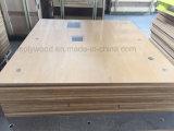 madera contrachapada incombustible del uso de 18m m del grado de interior HPL de la cabina